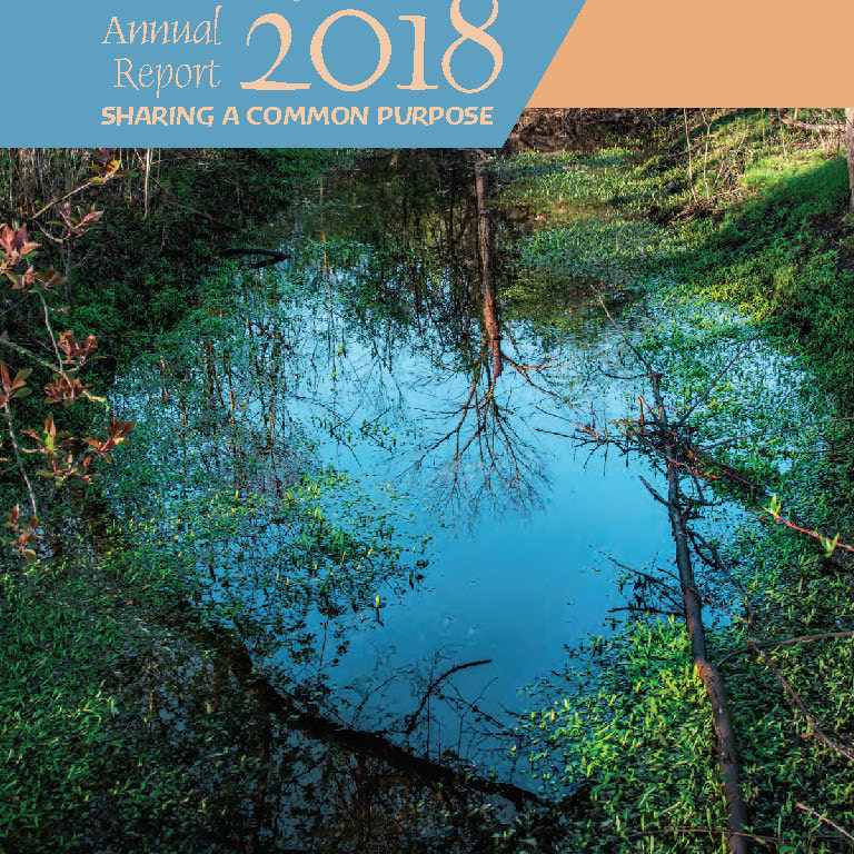 2018-OnlineAnnualReport_cover