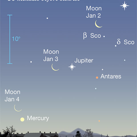 MaryStewarAdamsTheNightSkyChart