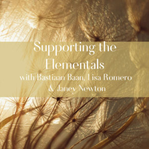 Supporting-the-Elementals