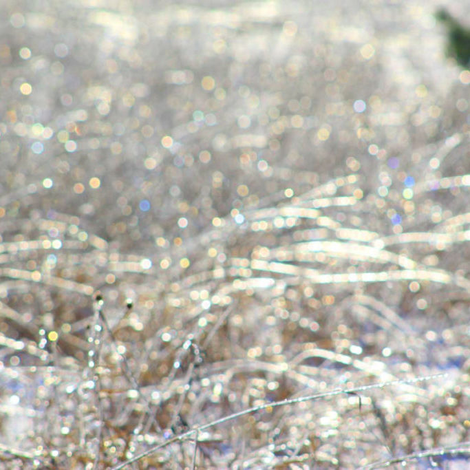 Winter-abstract-2